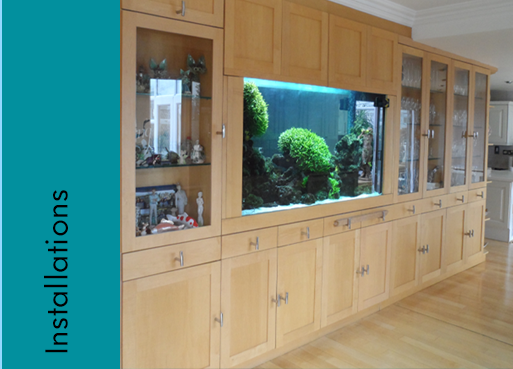 fish tank cleaning in Hertfordshire